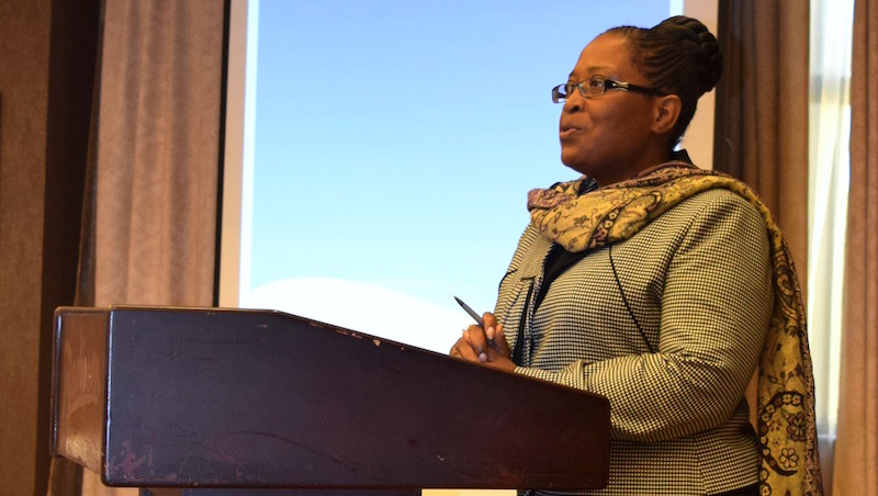 Mrs Cecilia Sakala Director of Standards and Curriculum presentation made at first key stakeholder workshop