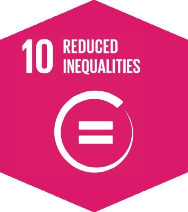 SDG icon