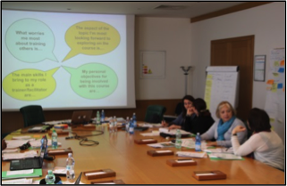 Capacity development for key trainers of the Secretariat of the International Plant Protection Convention
