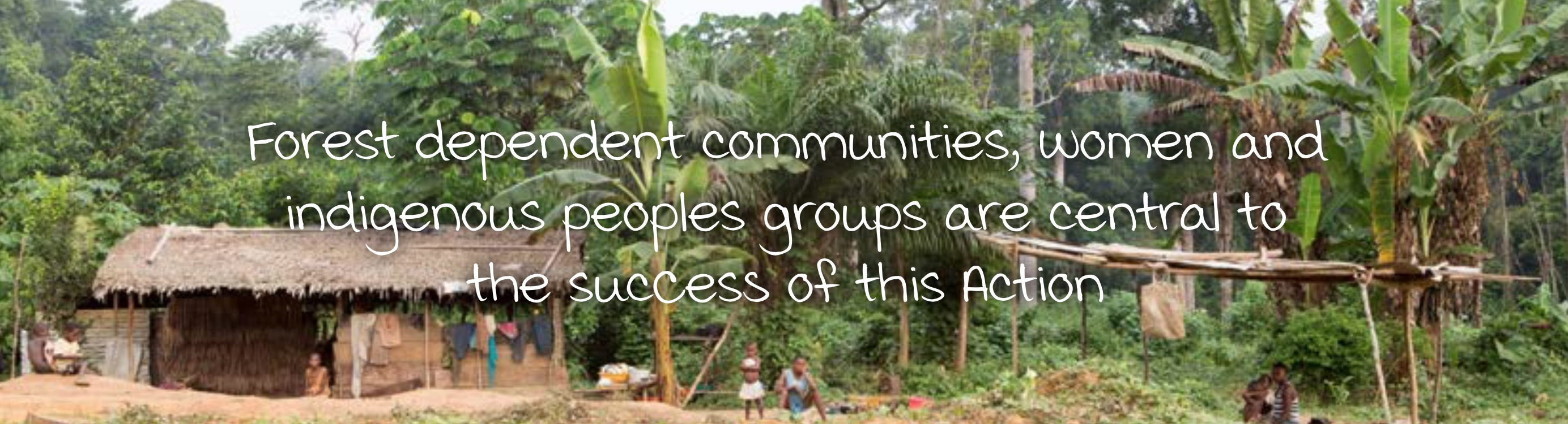 Forest dependent communities, women and indigenous peoples groups are central to the success of this Action