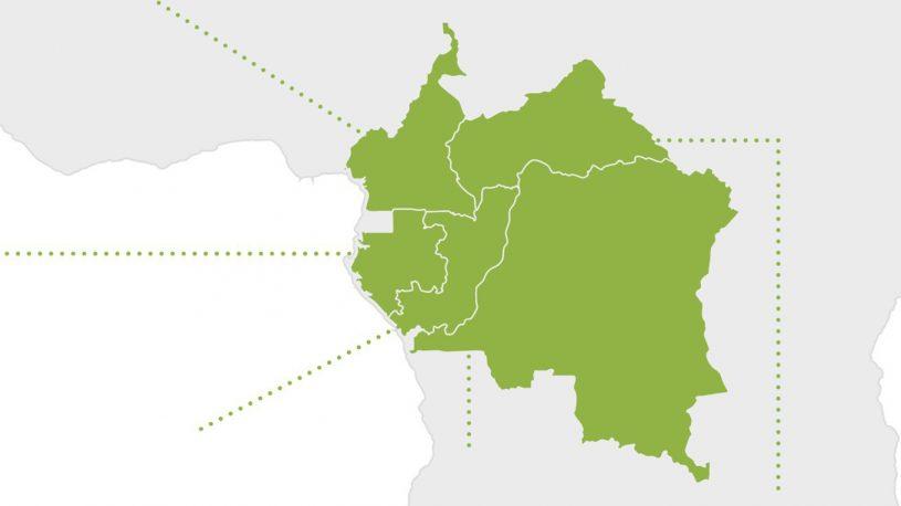Congo basin news