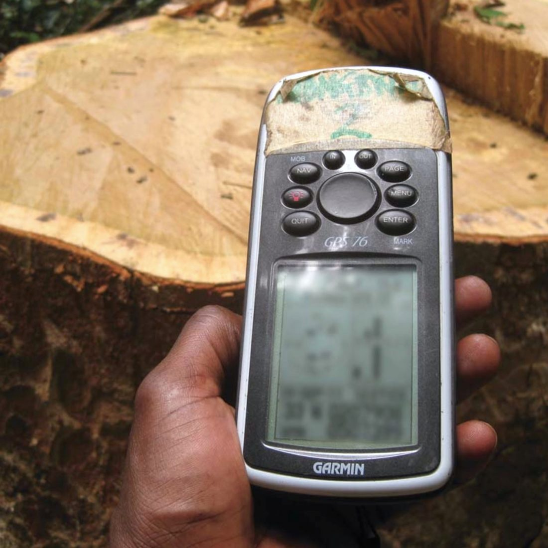 Image taken frmo CED's Simplified External Forest Monitoring Guide for the use of Communities