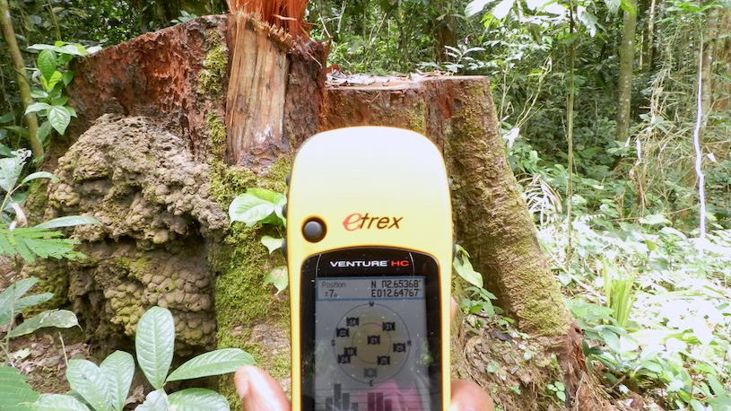 Independent forest monitoring