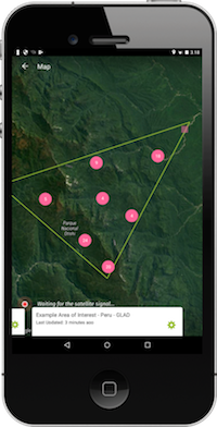 Forest watcher app