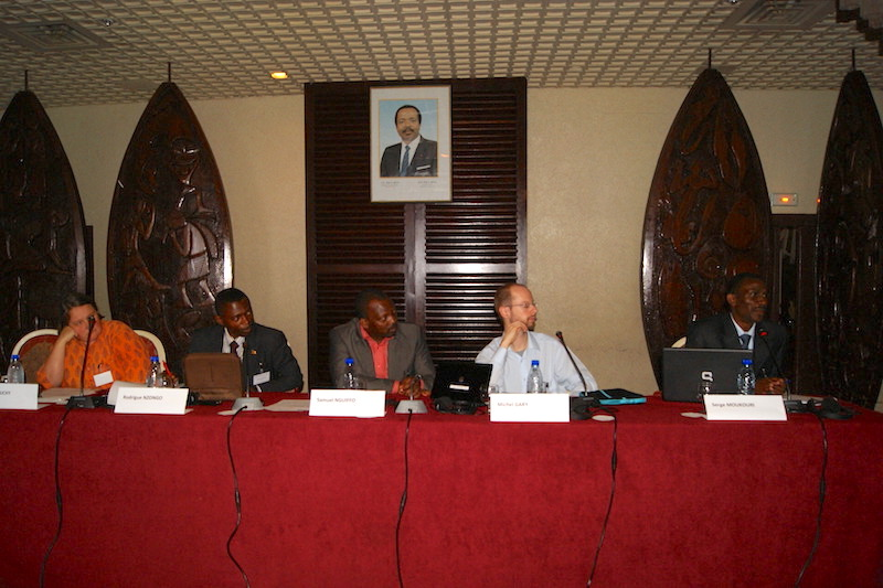 FGF Cameroon 2011 Session 2