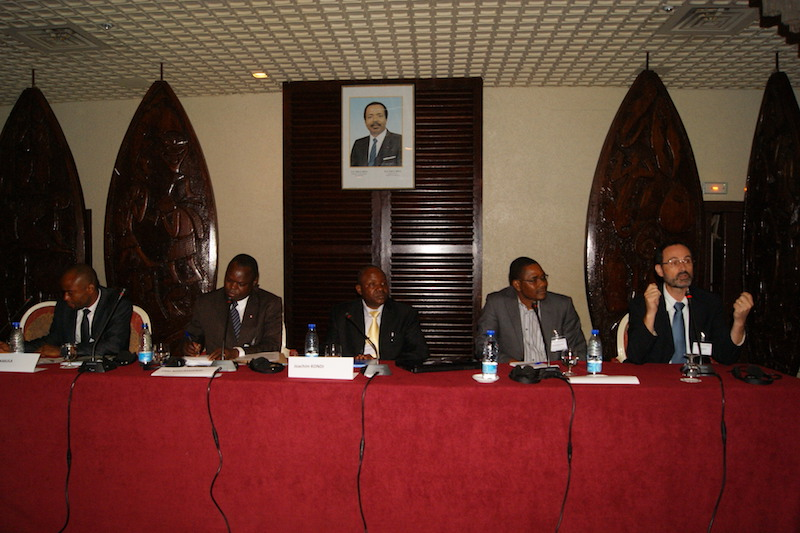 FGF Cameroon 2011 Session 3