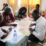 Ghana FGMC workshop