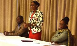 First Key Stakeholder workshop (2)