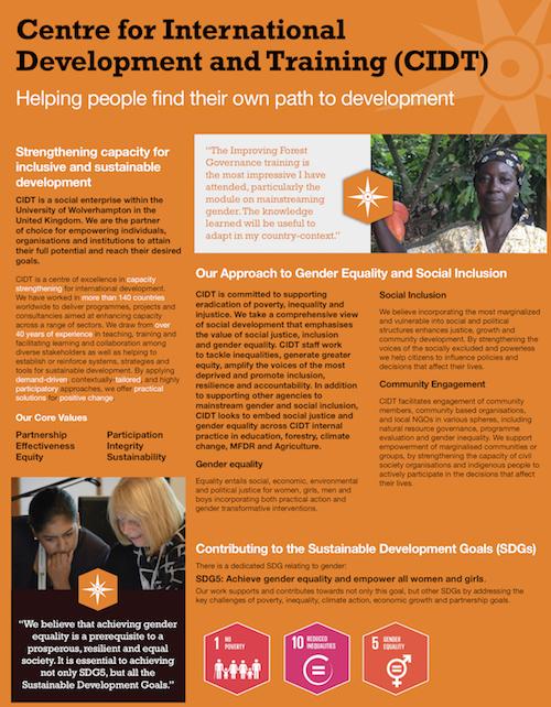 Gender Social Inclusion flyer