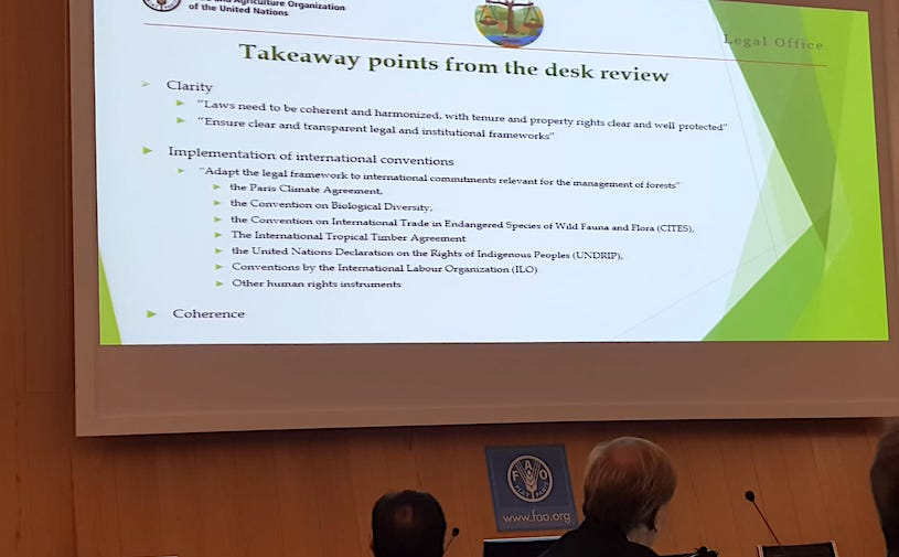 FAO technical working group