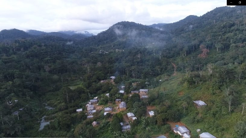 Aerial photo of forest village